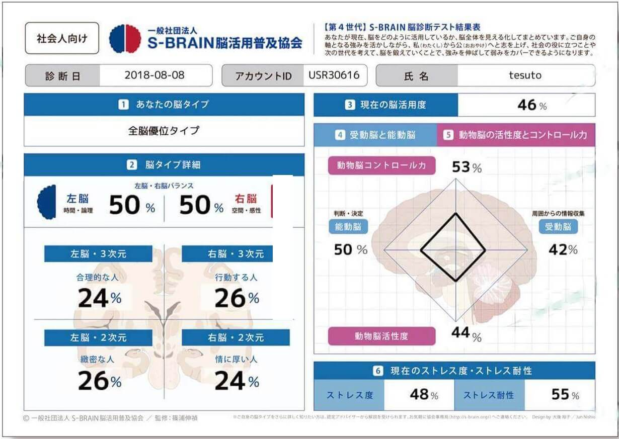 S-Brain(篠浦脳活用度診断)の結果図サンプル